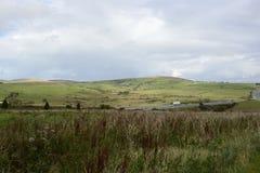 Bodmin amarrent dans les Cornouailles, Angleterre Images libres de droits