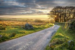 Bodmin Moor. A country lane leading through Bodmin Moor in Cornwall Stock Images