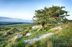 Bodmin Moor Stock Photos