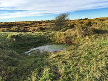 Bodmin Moor - Minions - Cornwall - UK Royalty Free Stock Image