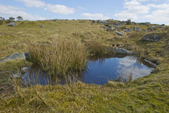 Bodmin Moor. In North Cornwall Royalty Free Stock Images