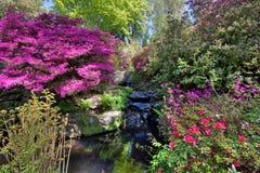 bodnant κήπος στοκ φωτογραφία