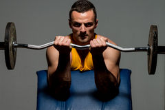 Boduy builder doing heavy weight exercise for biceps. Fitness trainer doing heavy weight exercise for biceps stock image