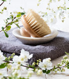 Body brush for natural beauty and washing up routine Royalty Free Stock Images