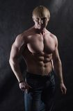 Body Builder. A portrait of a bodybuilder man in a studio Royalty Free Stock Images