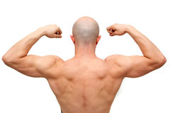 Body builder back Stock Images