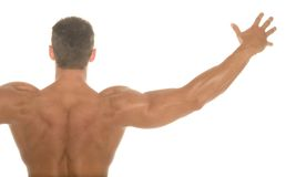 Body builder back Stock Photo