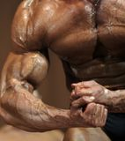 Body-builder. Stock Photo