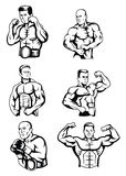 Body Builder Collection Royalty Free Stock Images