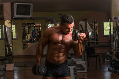 Body builder doing heavy weight exercise Stock Image