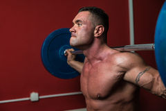 Body Builder doing squats with barbells Royalty Free Stock Photo
