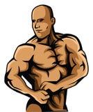 Body Builder stock illustration