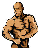 Body Builder Stock Photo