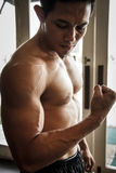 Body Builder looking his muscle Stock Photos