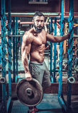 Body builder Royalty Free Stock Image