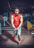 Body Builder Working Stock Images