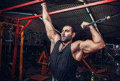 Body Builder Working Out Stock Images