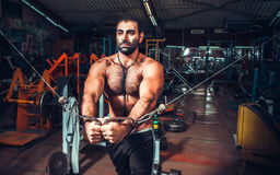 Body Builder Working Out Stock Photography