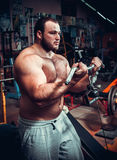Body Builder Working Out Stock Photo
