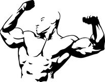 Body building. Vector illustration of muscle man suitable for body building club Royalty Free Stock Images