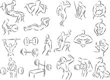 Body Building. 20 themed EPS images related to body building. The number of vector nodes is absolute minimum. The images are very easy to use and edit and are Stock Photos