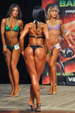 Body-building competition Stock Photography