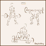 Body-building. Set of a vector Illustration shows a Body-building. Weightlifting Stock Photos