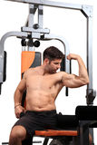 Body building workout Stock Image