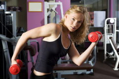 Body bulding dumbbell Stock Photography