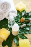 Body care Royalty Free Stock Photography