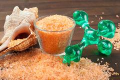 Body care accessories. Sea salt and massage tool Stock Photos