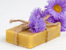 Body care with herbal soap Royalty Free Stock Photography