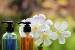 Body care product,shower,shampoo,lotion and Frangipani or plumer. Ia flower on nature background with Soap Bubbles in pastel style Royalty Free Stock Photography