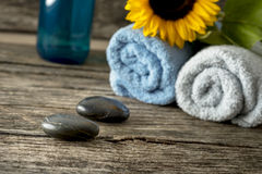 Body care and spa still life Royalty Free Stock Photo