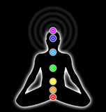 Body chakras. Seven chakras on a human body Royalty Free Stock Photography