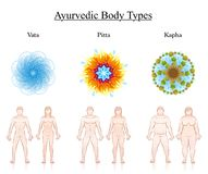 Body Constitution Types Couples Ayurveda Symbols Vata Pitta Kapha. Body constitution types. Ayurvedic dosha symbols - vata, pitta, kapha with illustration of stock illustration