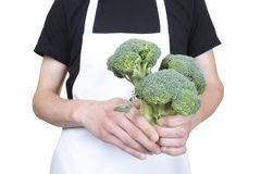 Body of cook holding fresh broccoli Stock Image