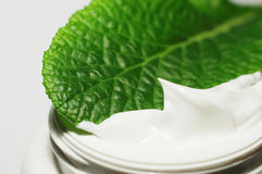 Body cream. Facial cream in close -up Royalty Free Stock Image