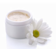 Body cream and chamomile Stock Image