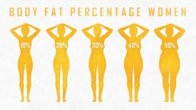 Body fat percentage woman. A woman diets and exercises before and after from fat to fitness Stock Images