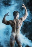 Body of Fit Totally Naked Muscular Man Stock Photography