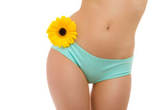 Body and flower-6 Royalty Free Stock Image