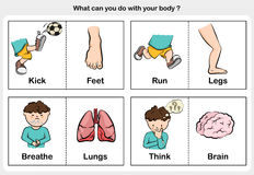 Body function kick, run, breathe, think - part of body concept. Worksheet for education Royalty Free Stock Photo
