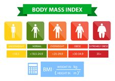 Body mass index illustration from underweight to extremely obese. Man silhouettes with different obesity degrees. Male body with different weight royalty free illustration