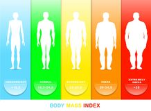 Body mass index vector illustration. Silhouettes with different obesity degrees vector illustration