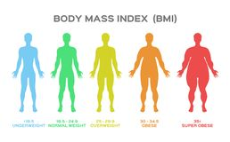 Body mass index. On white vector illustration