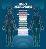 Body meridian system vector illustration scheme, Chinese energy acupuncture therapy diagram chart. Female body with energy paths and corresponding inner organs royalty free illustration
