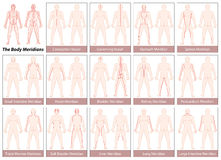 Body Meridians Chart Stock Photo