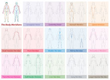 Body Meridians Chart Woman Colors. Body meridian chart of a womans body - with names and different colors - Traditional Chinese Medicine. Isolated vector Royalty Free Stock Photos