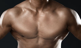 Body of muscular man Royalty Free Stock Images